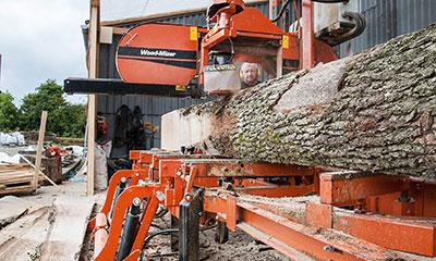 Het Amsterdamse bos levert duurzaam Amsterdams hout